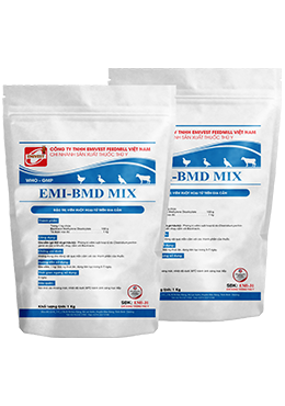 EMI-BMD MIX